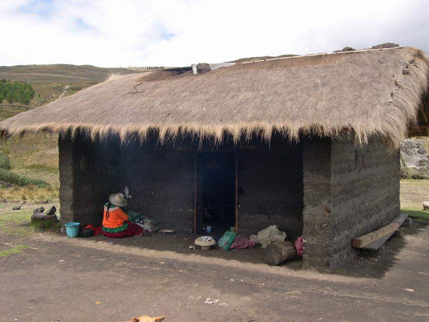 Peruvian hut