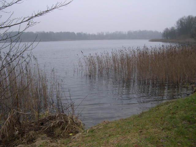 Pasivaikščiojimas nuo stoties iki Trakų pilies buvo vienas malonumas. Ramus žiemos rytas, gaivinanti vėsa ir nuostabi ežero pakrantė, pagyvinama ančių ir dažnų bastūnų.